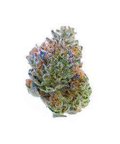 green bud with white crystals and orange hairs